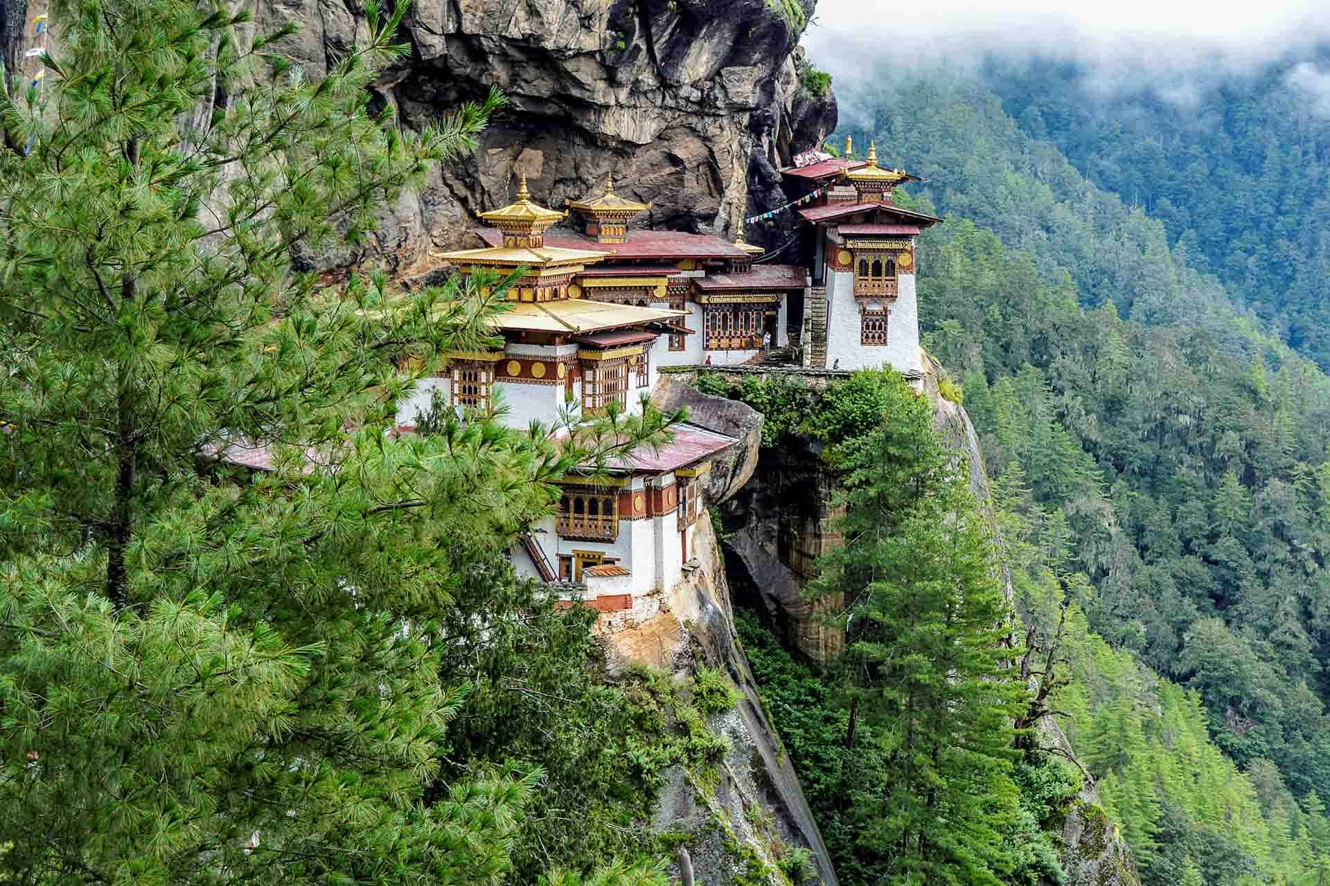 Searching for the Gross National Happiness in the Tiger's